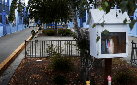 Little Free Library 1.png